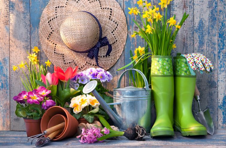 Какво трябва да направим за градината си през пролетта!