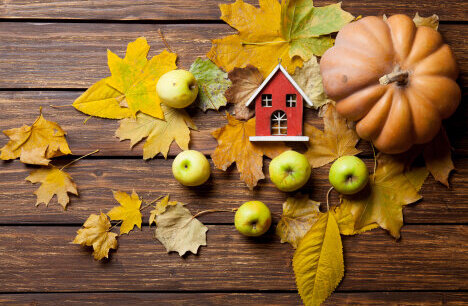 Смяна на сезоните: как да преминем плавно към есента