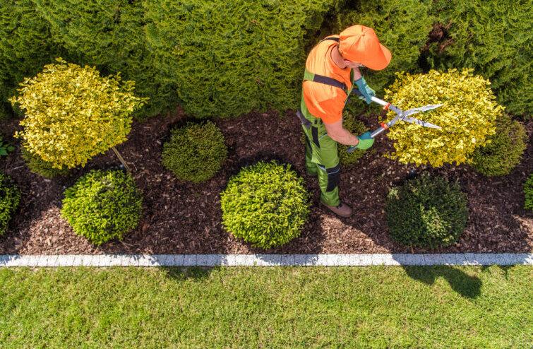 Как да организираме пространството в градината